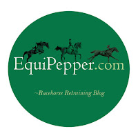 Equipepper logo