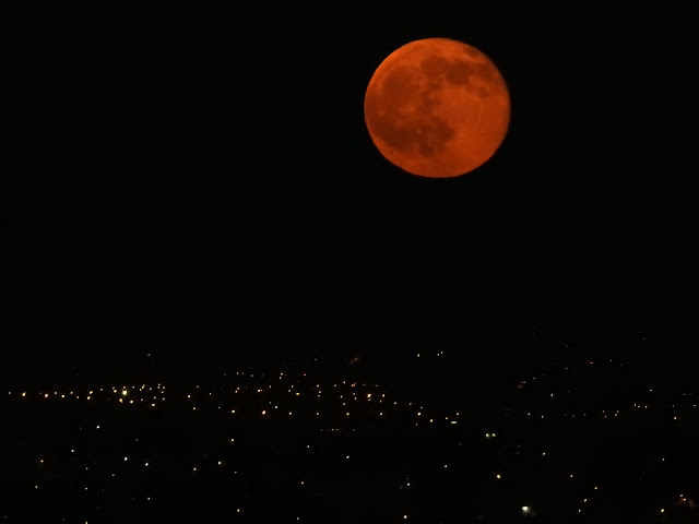 Rising red moon
