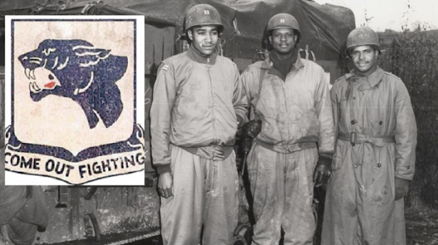 """""""Meet the Real Black Panthers, the Ones Hollywood Ignores. These guys are actual heroes. Why keep making movies about fake ones?"""""""