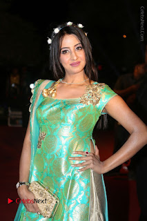 Actress Sanjjanaa Stills in Green Long Dress at Gemini TV Puraskaralu 2016 Event  0003.JPG