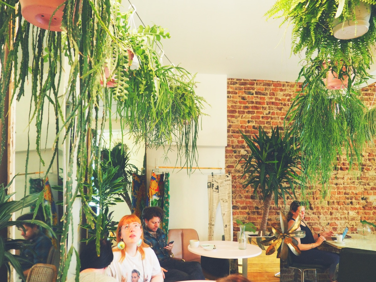 Palm Vaults Hackney Coffee Shop Review