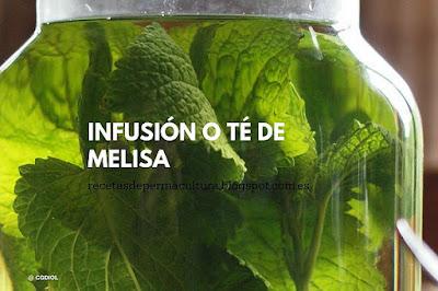 Te de Melisa con Limón