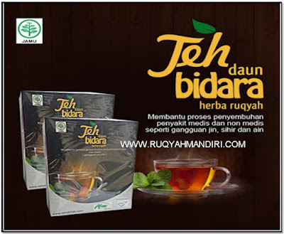 teh daun bidara
