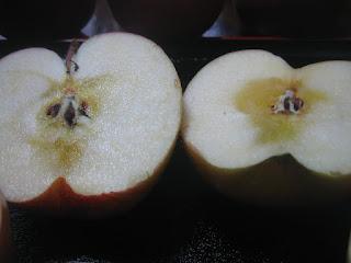 蜜がよく分かるりんごのアップ