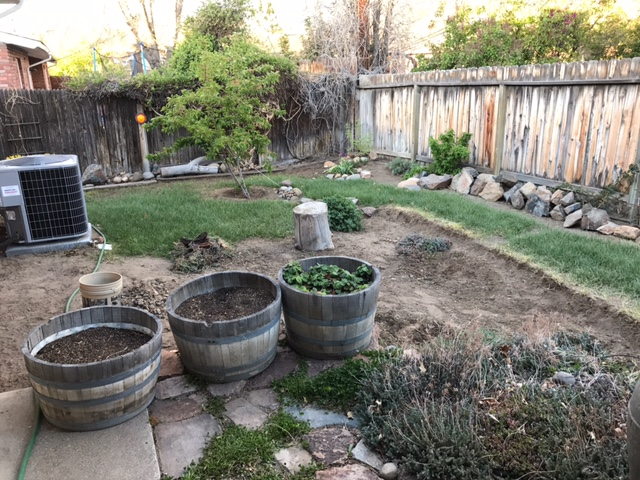 Backyard renovations before