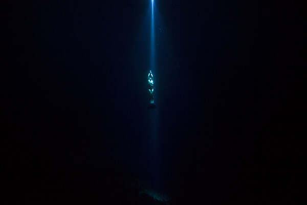 Photo of diver by Krystle Wright