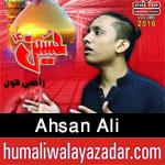 http://www.humaliwalayazadar.com/2016/07/ahsan-ali-nohay-2012-to-2017.html
