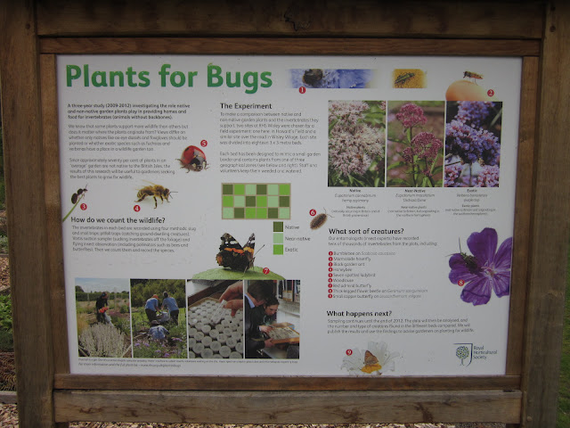 The main Plants for Bugs information board at RHS Wisley