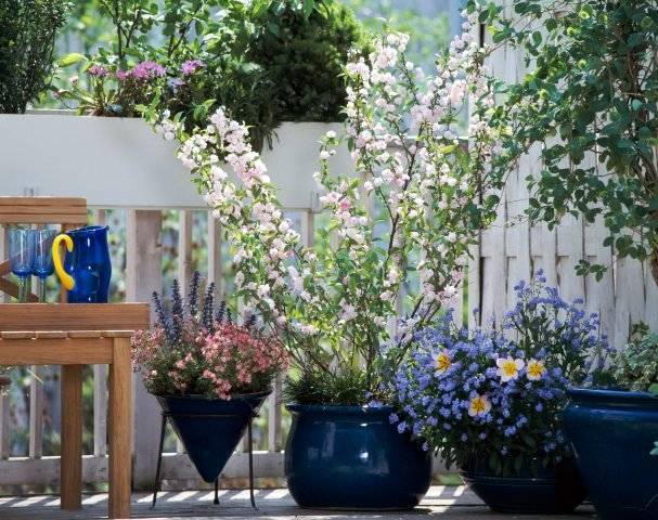 This And That In My Treasure Box: Spring Inspiration ... on Apartment Backyard Patio Ideas id=75797