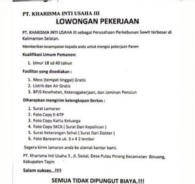 Visus Borneo Lowongan Kerja Pertanian Di Kalimantan Bulan Juli Pt Kiu