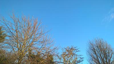 A Blue January Sky