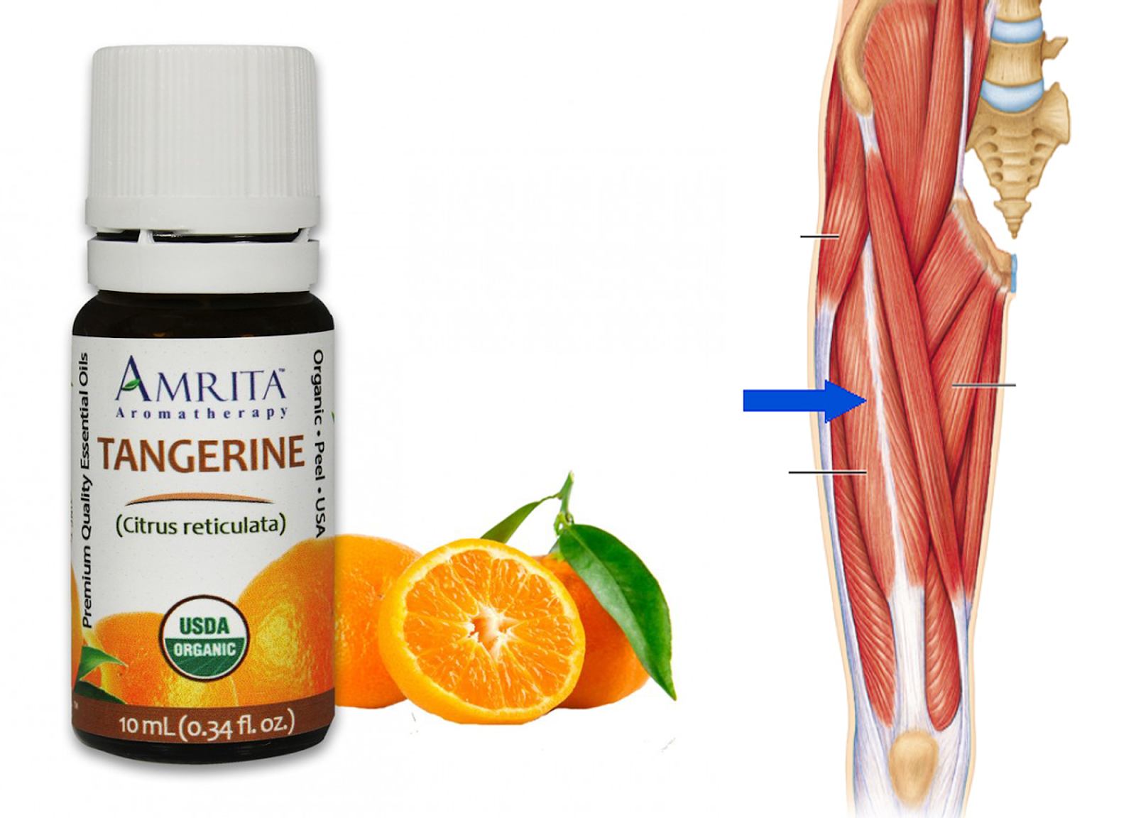 tangerine oil for cellulite