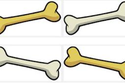 Tips Perawatan Kesehatan Tulang
