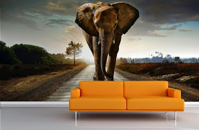 häftig tapet elefant djurtapet cool fototapet 3d