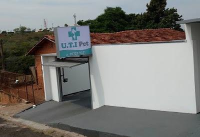 UTI para cães e gatos em Avarsé