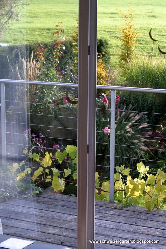 Der Garten Im Herbst Ziergräser Ein Paar Dauerblühende Rosen Und In Form Geschnittene Säulenhainbuchen Bestreiten Das Herbstliche Beet
