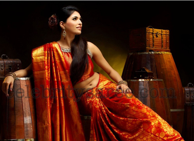 ba7d3dda42 Pictures of Actress In Traditional Silk Sarees - #rock-cafe
