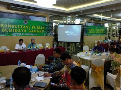 Budidaya Gaharu di Lampung Berkembang Pesat
