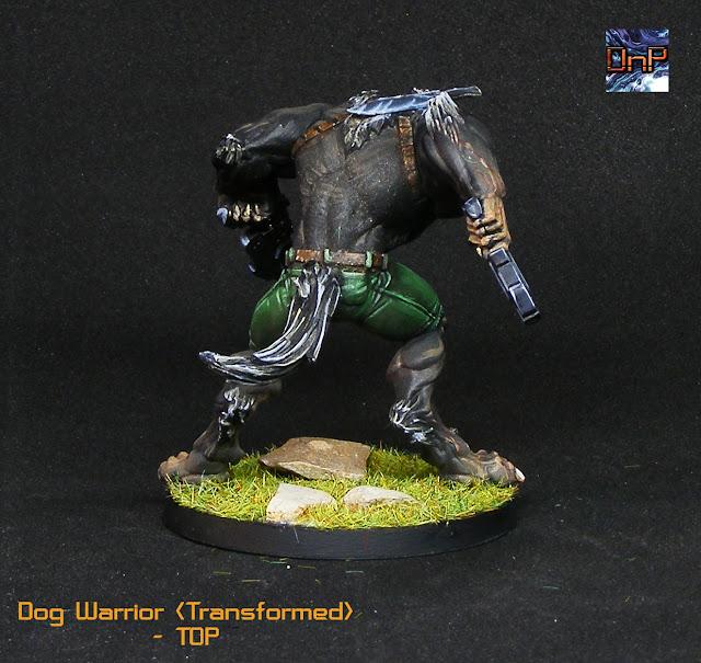 Imagen de Dog Warrior infinity