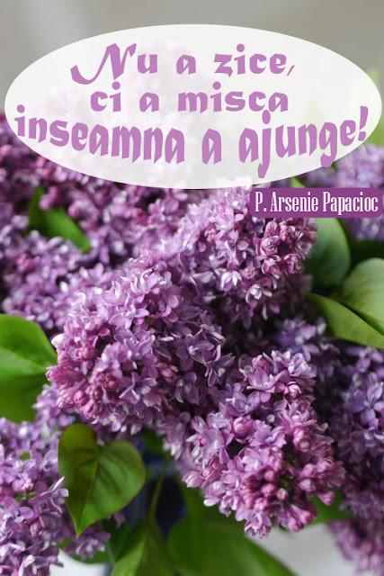 #ArseniePapacioc #citat #florideliliac