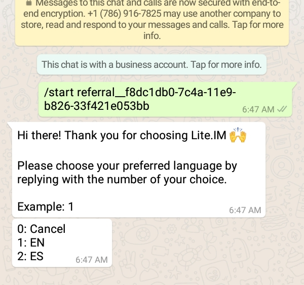Send, Receive And Earn Crypto Over WhatsApp With Lite IM Bot