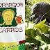Bioparque Los Ocarros - najpiękniejsze ZOO na Los Llanos