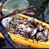 Investigan muerte de peces en laguna ubicada en la entrada de complejo hotelero