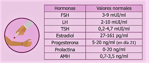 Valores progesterona dia 21 embarazo