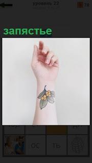 Изображение женской руки, где на запястье имеется тату