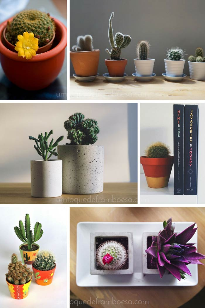 inspirações de decoração com cactos em vasos de barro e concreto