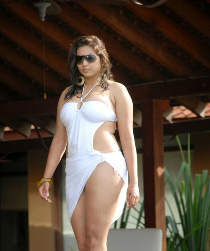 Namitha Actress Hot Bikini Image - Shiner Photos-8301