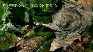Pusat - Pusat Keunggulan Ekonomi Indonesia