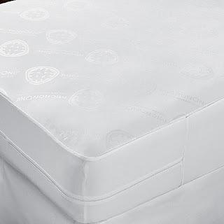 bed bugs encasement, bed bugs,atlanta, bed bugs savannah, bed bugs hilton head,