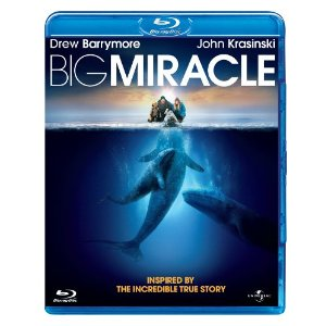 Big Miracle on Blu-ray DVD