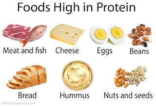 Protein sebagai bahan pembangun tubuh, Jenis jenis protein, Fungsi protein, Efek jika kelebihan atau kekurangan protein dan Sumber sumber penghasil protein