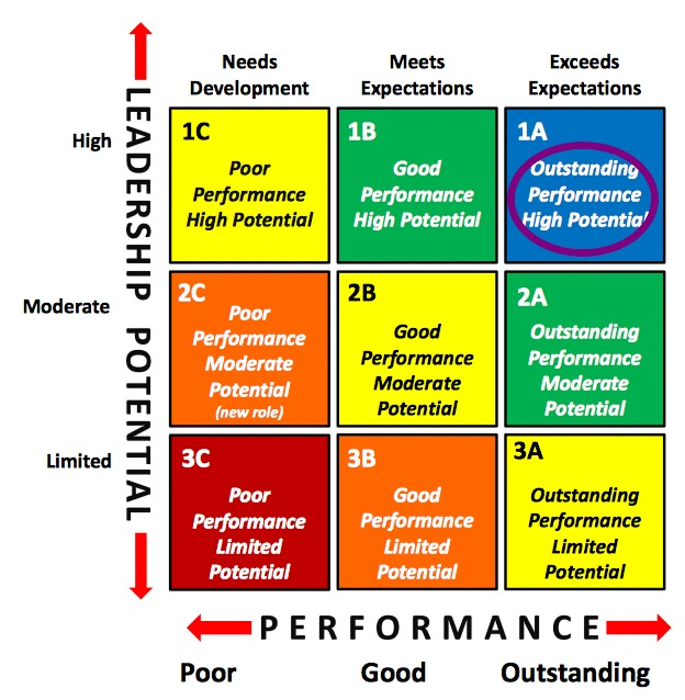 Talent Management 9 Box Grid Outstanding Performance High Potential