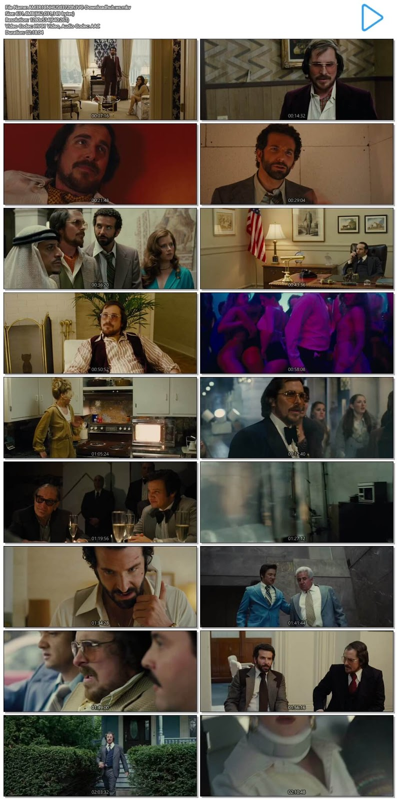 American Hustle 2013 Hindi Dual Audio 720p HEVC BluRay Free Download