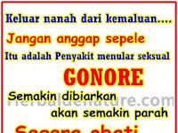 Obat Herbal Untuk Gonore