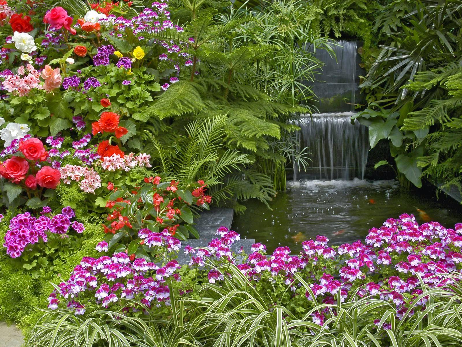 HD Flower Garden Wallpaper|http://refreshrose.blogspot.com/