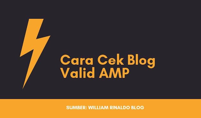 2 Cara Mudah Cek Blog atau Website Valid AMP (Accelerated Mobile Phone)
