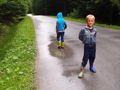 grzyby po deszczu, grzyby 2017, grzyby na Orawie, grzyby w lipcu