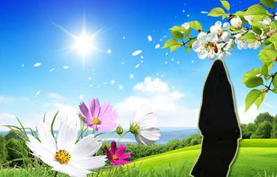 الإيجابية في حياة المرأة المسلمة