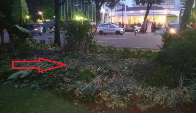 Diberitakan Merusak Taman Kota Saat Aksi Demo, FPI Bongkar Siapa Perusaknya, Ternyata…