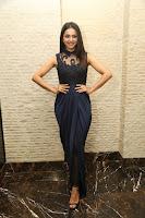 Rakul Preet Singh Sizzling at Dhurva Thanks Meet HeyAndhra.com