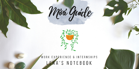 Mini Guide on Work Experience and Internships