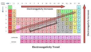 Lesson 2 graduation of properties of elements in the modern by increasing the atomic number the electronegativity of elements of the same period increases but it decreases in the same group urtaz Gallery