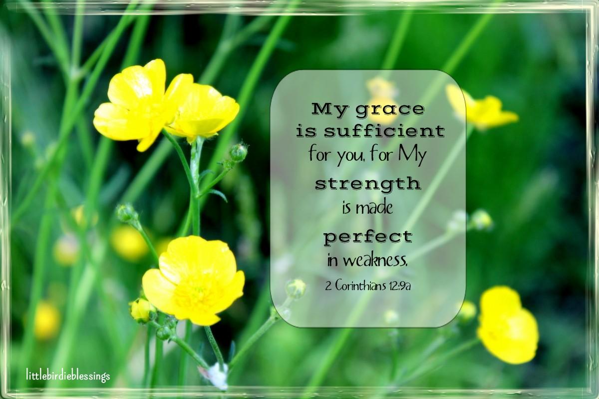 Little Birdie Blessings : God's Grace Is Sufficient