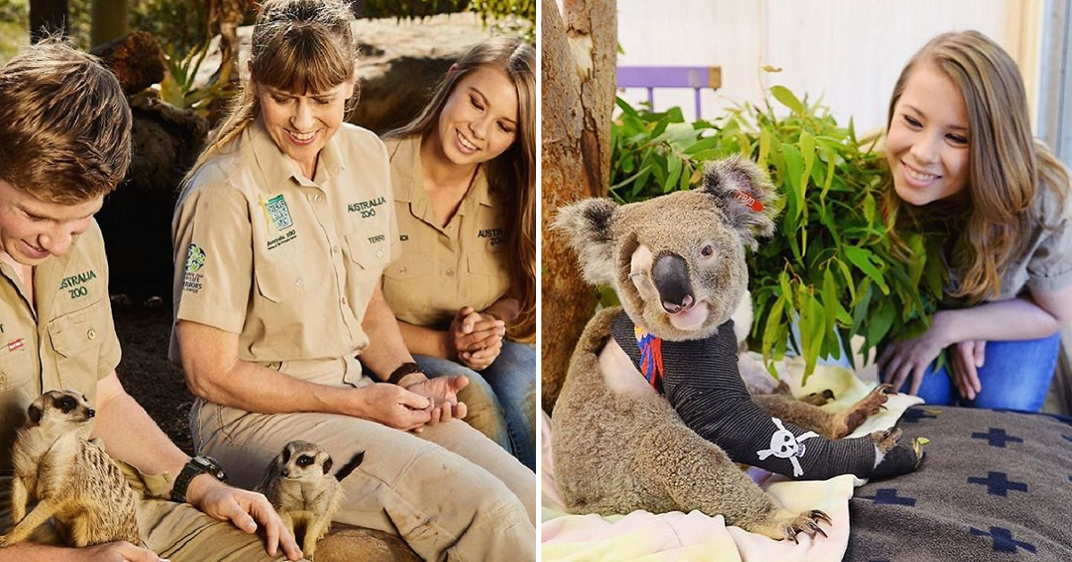 The Irwin Family Helped More Than 90,000 Injured Animals In Australia