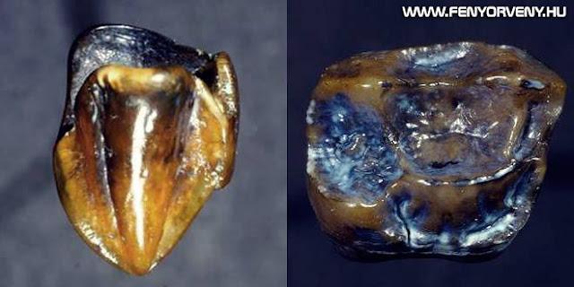 Újraírhatja az emberiség történetét egy 9,7 millió éves lelet