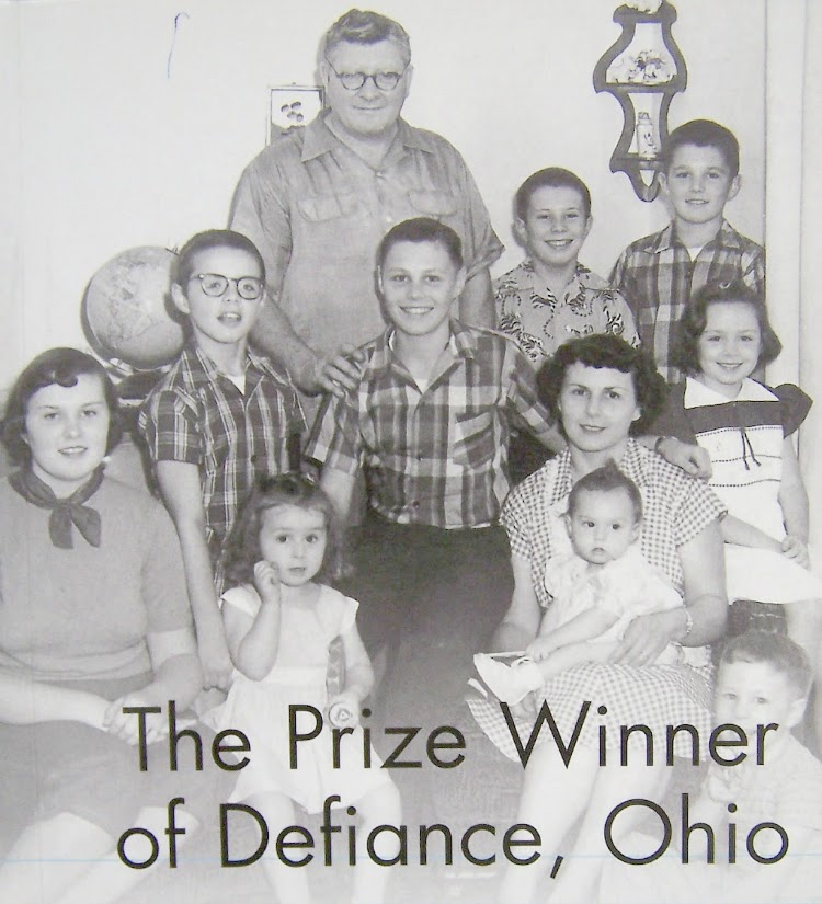 A Vintage Nerd, Vintage Blogger, Vintage Book Recommendations, Book Review, The Prize Winner of Defiance Ohio, Evelyn Ryan, Terry Ryan
